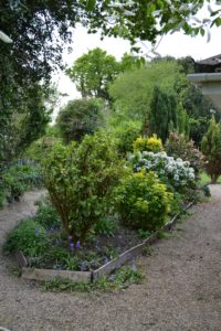 Sensory Garden - with wide gravel paths