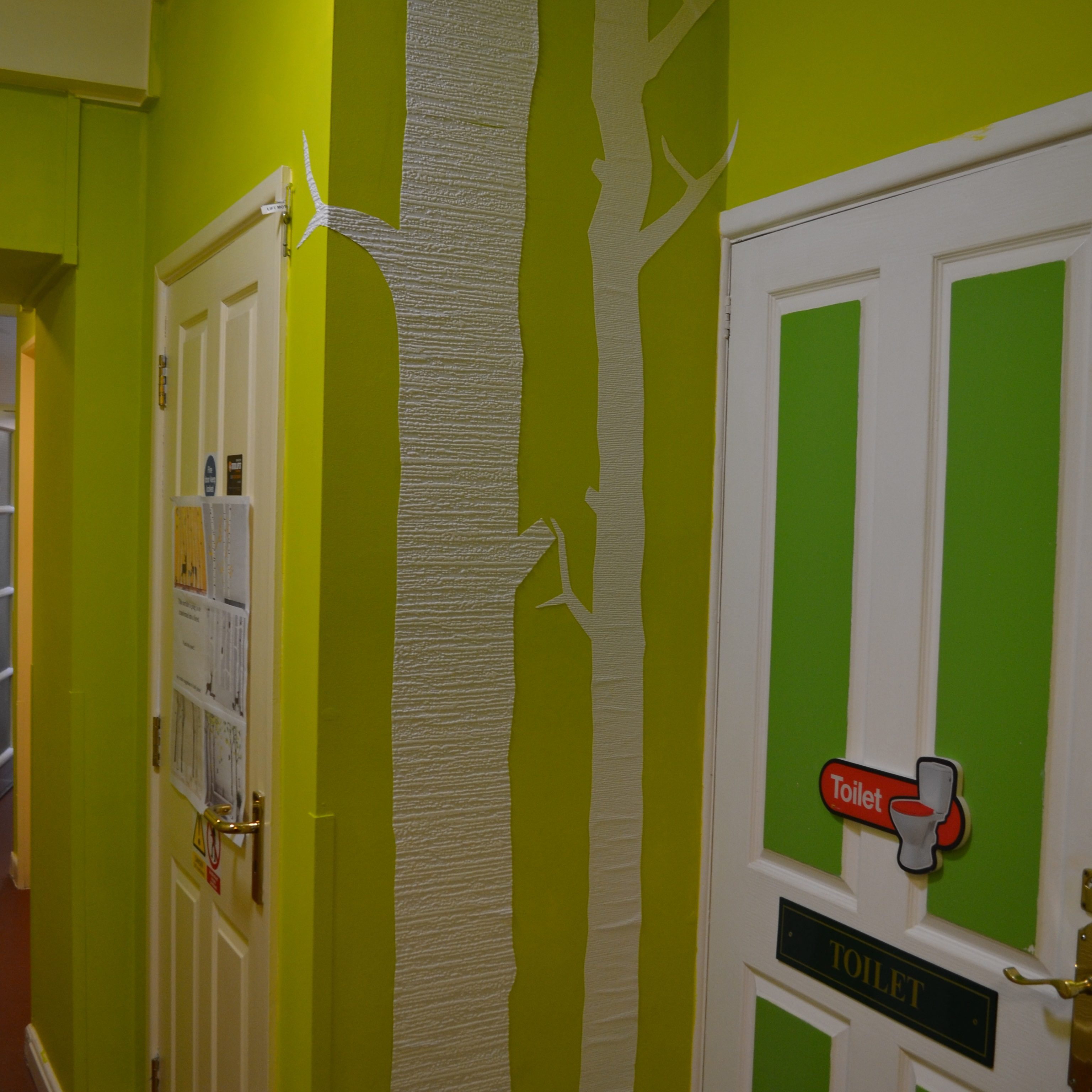 Shows Green painted walls with tree silhouettes.